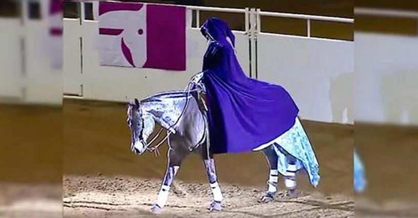 cavalo princesa