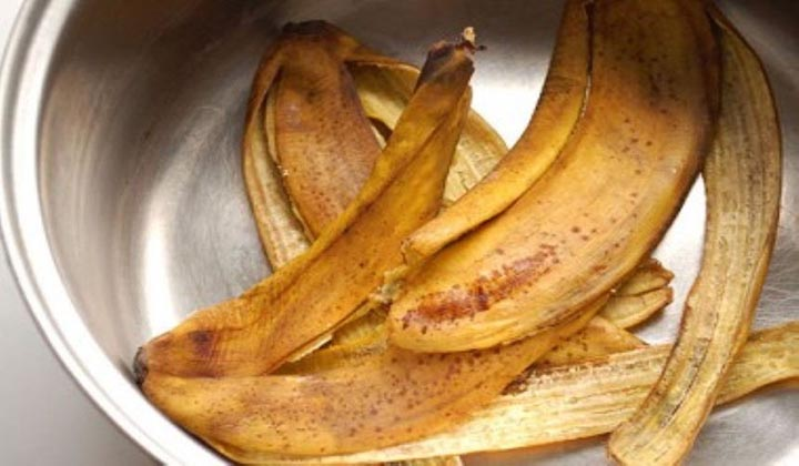 cha_casca_banana