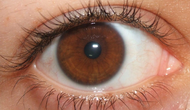 olhoscastanhos