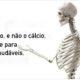 magnesio_e_ossos