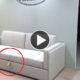 sofa-beliches