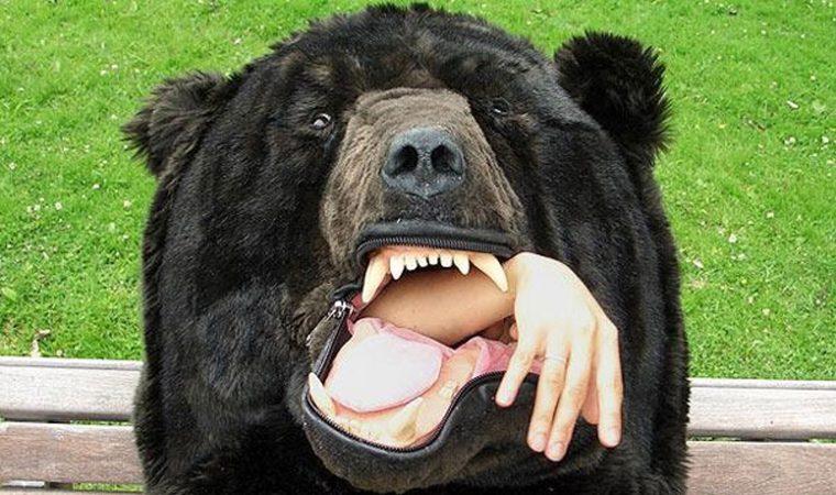 urso-saco-1-760x450